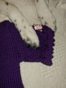 Piper's paws on  Julia's dress