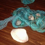 Seashells by The Seashore Scarf