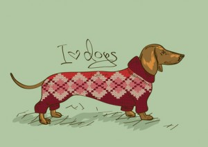 dachshund in knitted sweater
